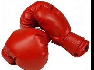 Boxe-Pugili-sa9534-piacenza.jpg