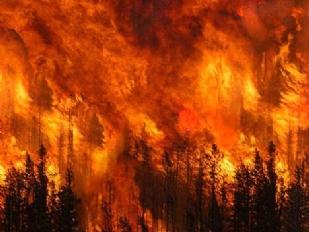 Incendio-a-Ibiz9633-piacenza.jpg