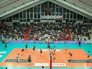 Volley-Domenic10194-piacenza.jpg