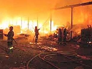 Incendi-devasta12101-piacenza.jpg