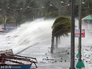 Tifone-Filippin13971-piacenza.jpg