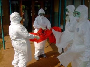 Allarme-Ebola-15428-piacenza.jpg