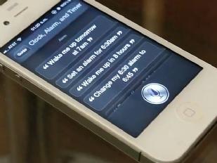 Siri-inguaia-la15514-piacenza.jpg