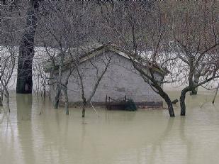 Alluvione-Dann16723-piacenza.jpg