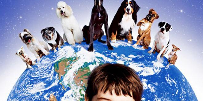 """Poster for the movie """"Cani dell'altro mondo!"""""""