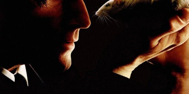 """Poster del film """"Willard - Il paranoico"""""""