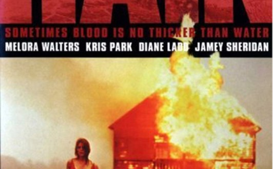 "Poster del film ""Rain"""