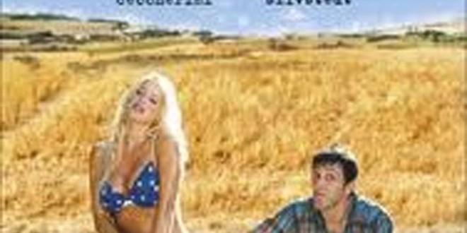 """Poster del film """"La mia vita a stelle e strisce"""""""