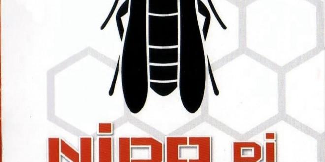 "Poster del film ""Nido di vespe"""