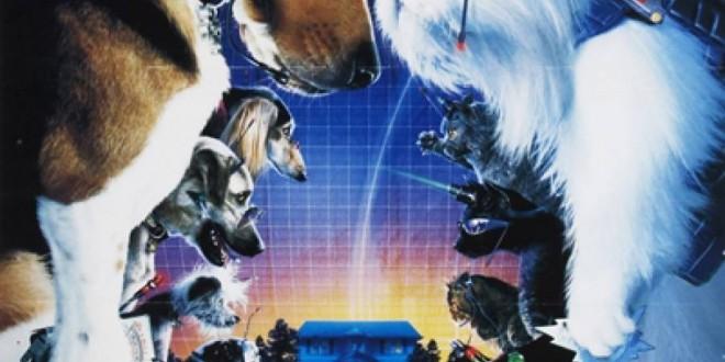 """Poster del film """"Come cani e gatti"""""""