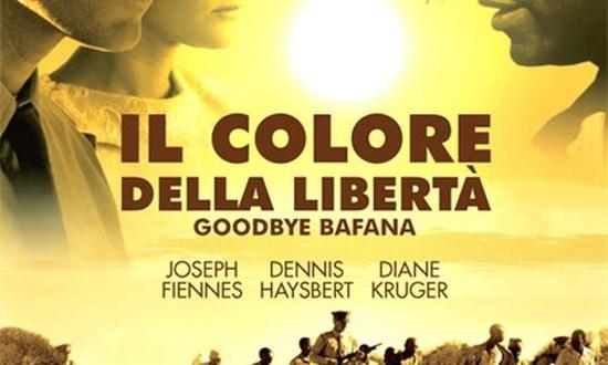 """Poster del film """"Il colore della libertà"""""""