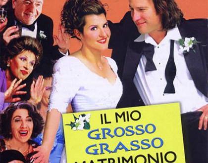 """Poster del film """"Il mio grosso grasso matrimonio greco"""""""