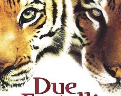 "Poster del film ""Due fratelli"""