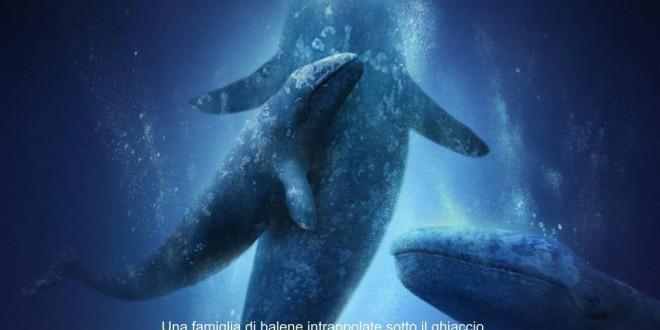 """Poster del film """"Qualcosa di straordinario"""""""