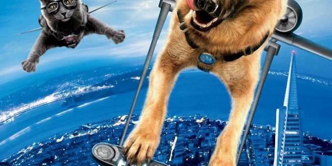 """Poster for the movie """"Cani e gatti - La vendetta di Kitty"""""""