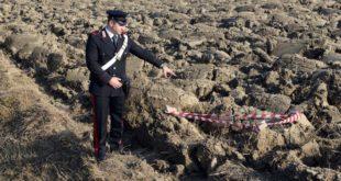 San Giorgio. Trovata in un campo un'altra bomba della Seconda Guerra Mondiale