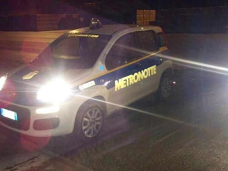 Metronotte-Fur17626-piacenza.jpg