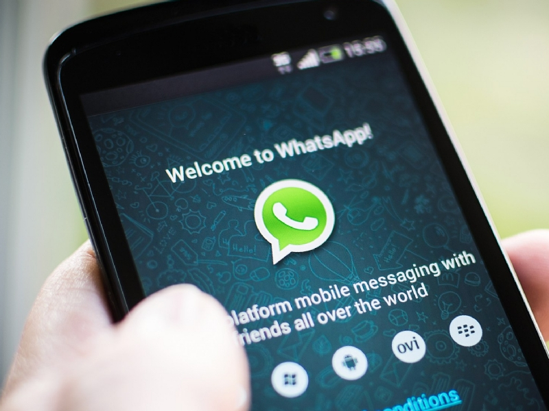 WhatsApp-Dati-17359-piacenza.jpg