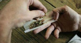"""Nello zainetto oltre un etto di marijuana. Il 15enne: """"È per uso terapeutico"""""""