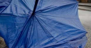 Raffiche di vento e temporali. Allerta meteo fino alle 18.00 di giovedì 27
