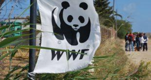 WWF: Tutto pronto per la Festa delle Oasi