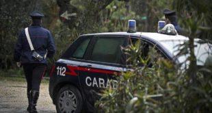 Tragedia a Carmiano. 70enne perde la vita colpita da un tronco tagliato dal marito