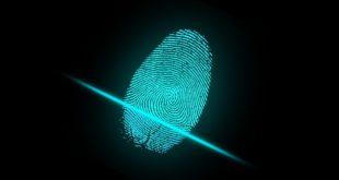 """Impronte digitali. """"Nessuna evidenza scientifica che siano uniche"""""""