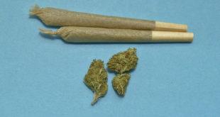 Quattro dosi di marijuana negli slip. Scatta la denuncia per un 21enne