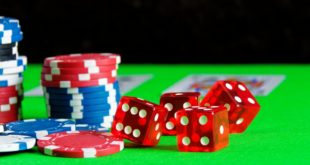 Scoperta l'area del cervello che controlla l'amore per il rischio e il gioco d'azzardo