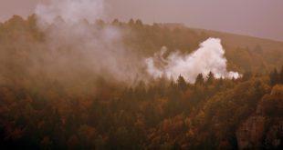 Gelicidio, Rancan (Lega): «Ripulire i boschi per prevenire gli incendi»