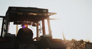 A 5 anni perde la vita schiacciato da un trattore. Lutto cittadino a Pontenure