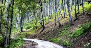 Anziano si perde sul Monte Penna. Messo in salvo dal Soccorso Alpino di Piacenza