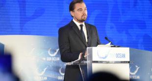 Leonardo DiCaprio. A lui intitolata una nuova specie di coleottero acquatico