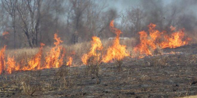 Fire burn field