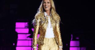 Paura durante il tour di Céline Dion. Membro del team folgorato